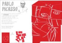 PICASSO-800OK